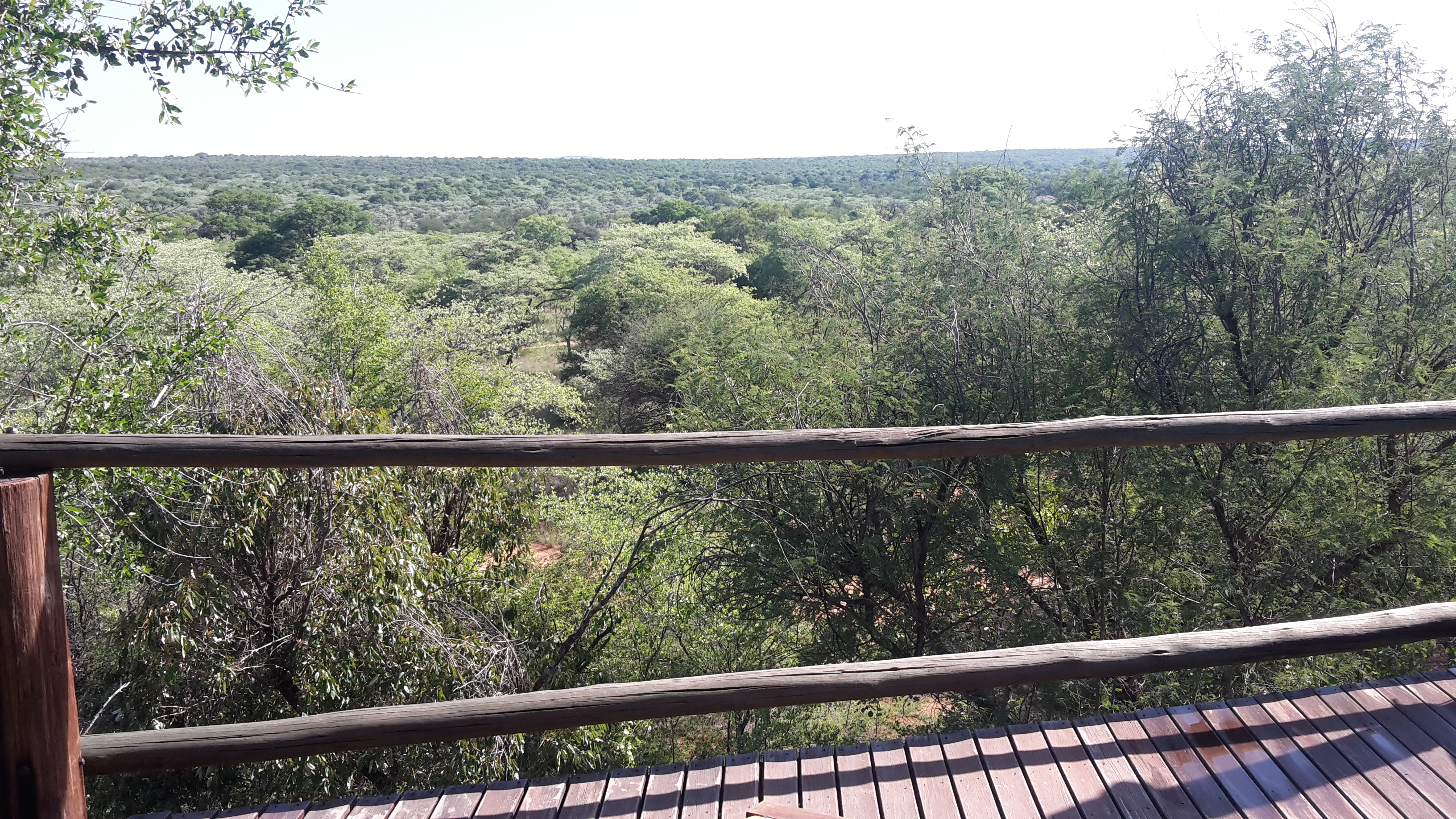 View from Luxury Tented Camp - Gnu Ranch